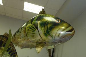 Радиоуправляемая рыба (Язь)